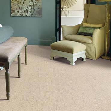 Caress Carpet by Shaw | Salem, OR